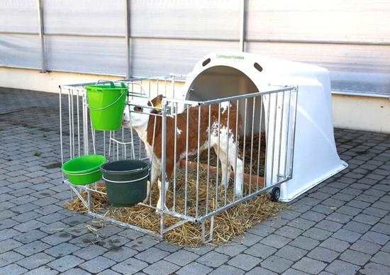 Fotografija proizvoda Pojedinačna kučica za telad - CalfHouse Flexbox