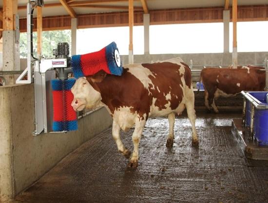 Fotografija proizvoda Stroj za čišćenje krava HAPPYCOW Duo
