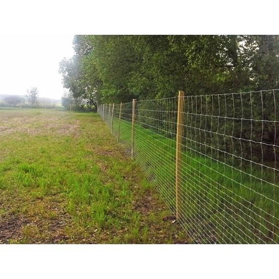 Fotografija proizvoda Pocinčana zaštitna mreža 125 cm / 50 m