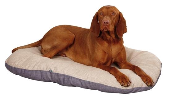 Kraljevski jastuk Loneta 64x48x7 cm
