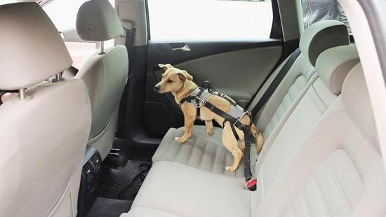 Sigurnosni remen za automobil