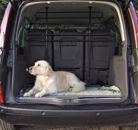 Zaštitna rešetka za automobil