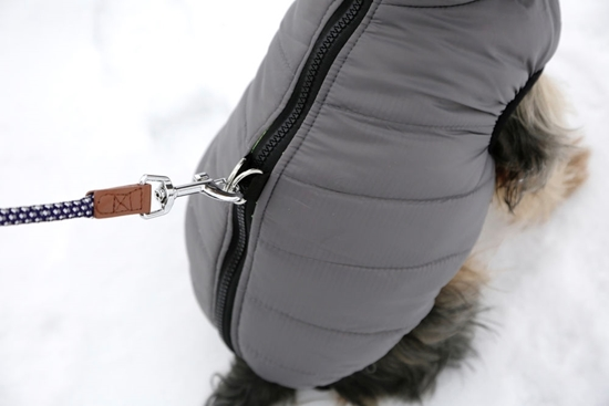 Kaputić za pse Charmonix L