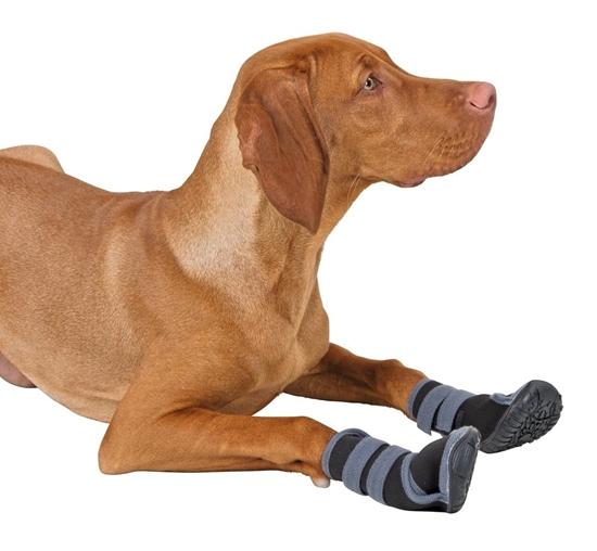 Papuče za pse S