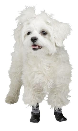 Papuće za pse Susi L