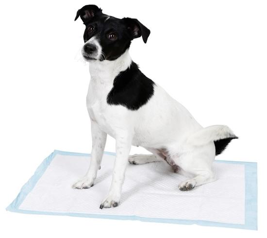 Podloga za psa 60x45cm