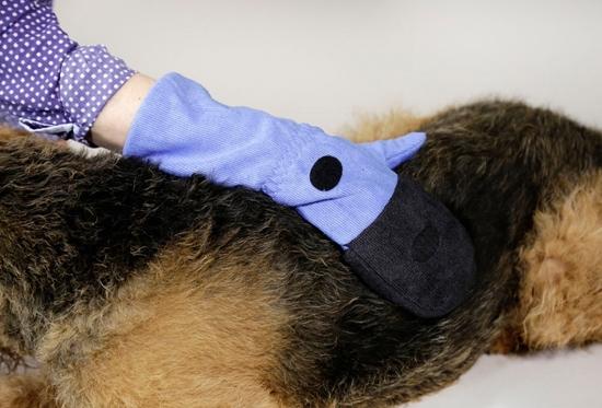 Rukavice za njegu pseće dlake