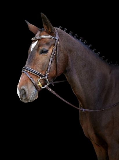 Uzde  Kingston-za poni