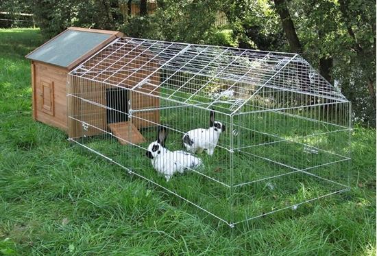 Ograda za velike zečeve